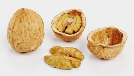 Realistic 3D Render of Walnut