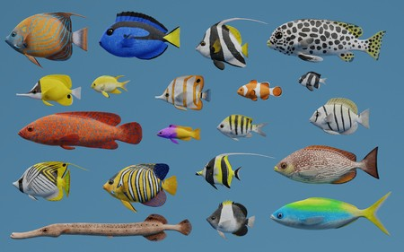 Realistic 3D Render of Tropical Fish Collection