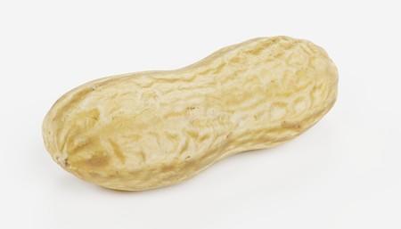 Realistic 3D Render of Peanut