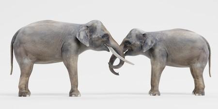 Realistic 3D Render of Asian Elephants Фото со стока