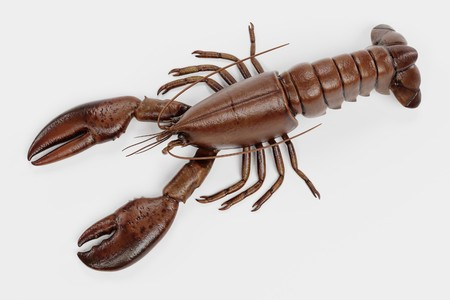 Realistic 3D Render of Lobster Фото со стока