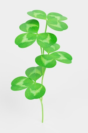 Realistic 3D Render of Clover Plant Stock Photo