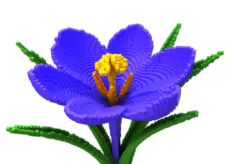 3D Pixel Flower Crocus On White Background