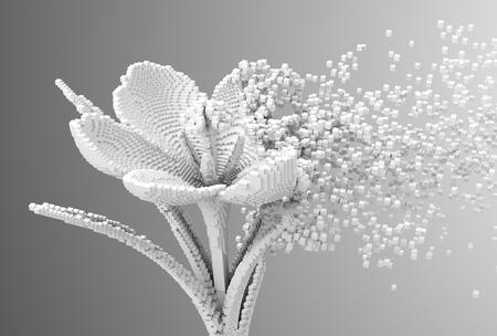 Digital Flower Disintegrates To 3D Pixels