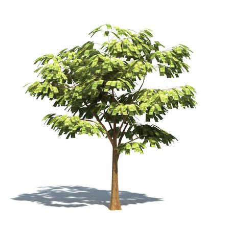 Realistic 3D render of a tree with 100 dollar leafs.