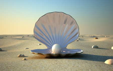 pearl shell: An open sea shell with a pearl inside