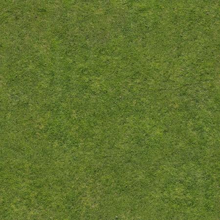 Green tileable grass texture