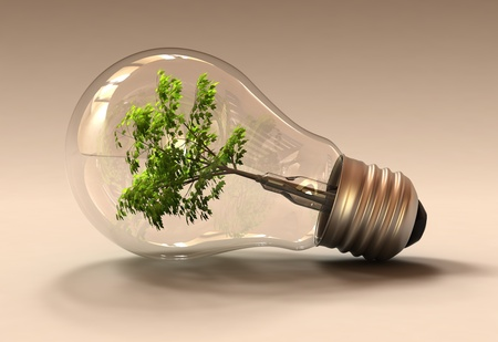 Studio shot of a light bulb with a tree inside it Stock Photo