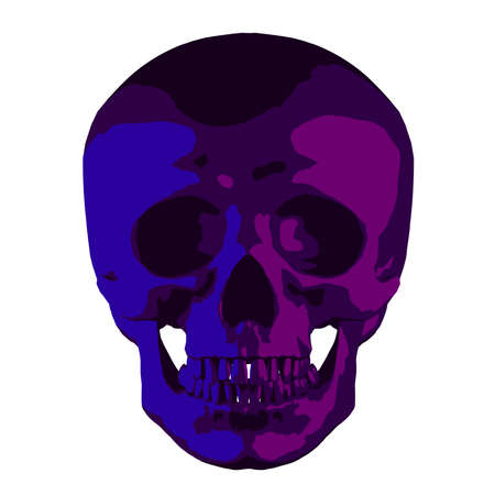 Human anatomical purple-violet skull isolated on white background, vector