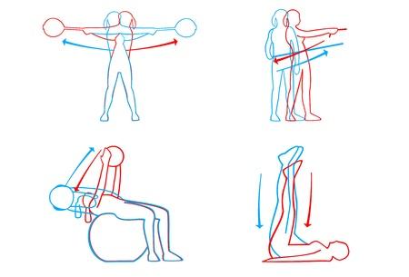 Illustratie van fitnessbewegingen