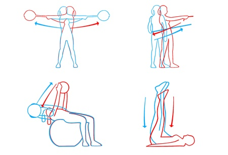 the instructor: Illustration of fitness moves