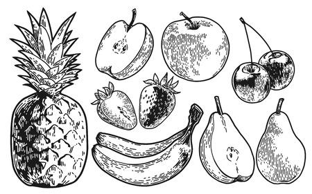 Fruits set hand drawn Illustration. Stock Illustratie