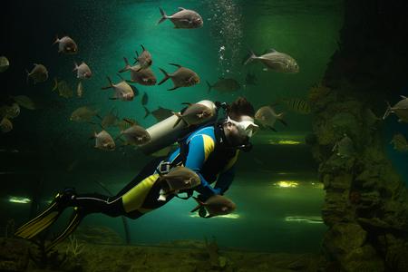 Taucher umgeben von Fischen
