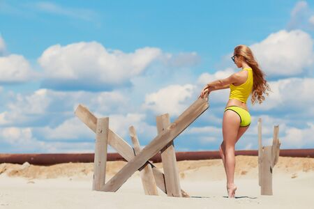 Side view of seductive skinny woman graceful stretching arms and holding wooden part of fence in sandy beach Stock Photo