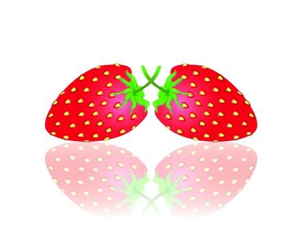 srawberries: strawberry model