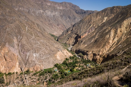 The Oasis in the Colca canyon in Peru Stock Photo - 18242766