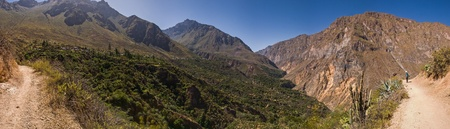 Colca Canyon panorama with trekking path Stock Photo - 18242780