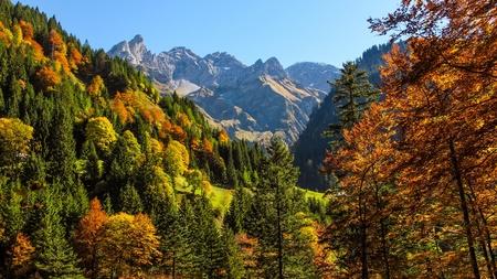 Autumn atmosphere in the Allgaeu