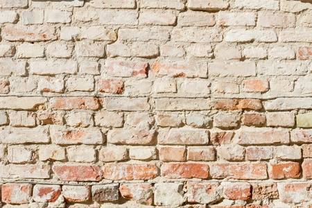 bedraggled: Bedraggled brick wall in dusted yellow