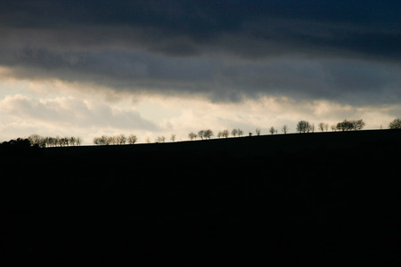 Landscape silhouette with trees an moody sky