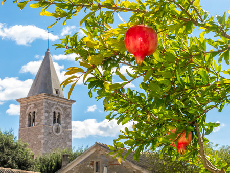Pomegranates in front of ancient steeple Stock Photo