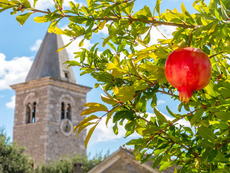 Pomegranate in front of ancient steeple Stock Photo