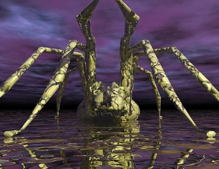 Digital visualization of a spider photo