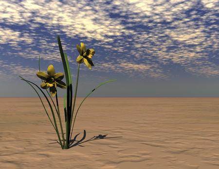 Digital visualization of a daffodil Stok Fotoğraf