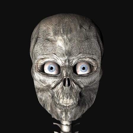 3d scary: digital rendering of a skull