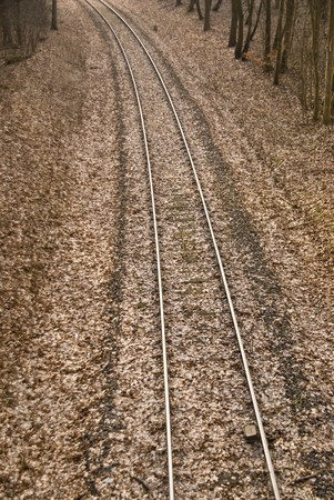 wood railroad: old railroad in a wood
