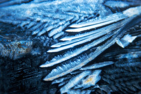 tartaric: Microcrystals of tartaric acid in polarized light