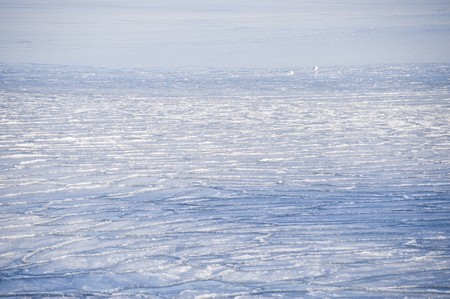 icily: sheets of ice in the baltic sea