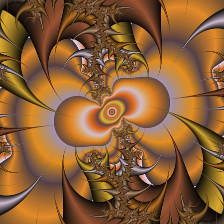 chaos theory: digital visualization of a fractal