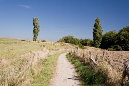 foot path near kiel  germany photo
