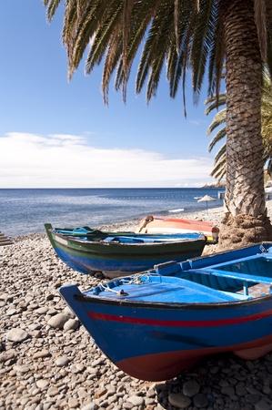 Scena w Portugalii / Maderze