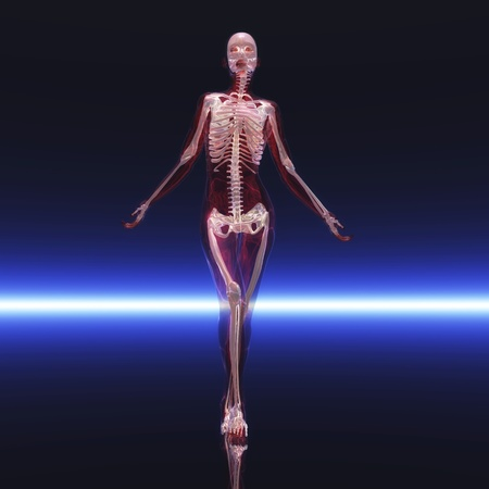 Digital visualization of a skeleton Stock Photo - 9118459