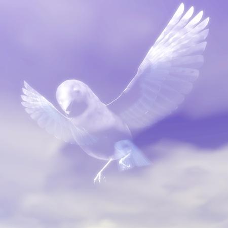 Digital visualization of a bird