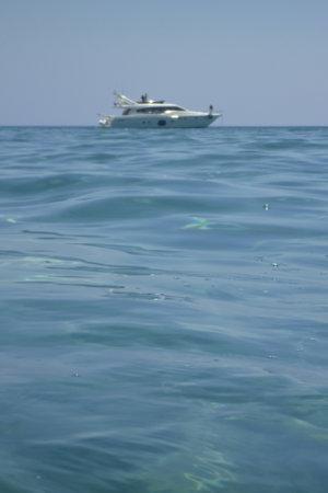 reflektion: Water surface