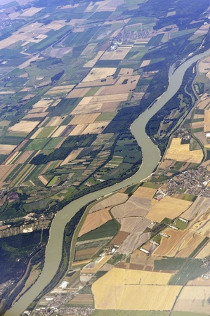 aerial animal: Aerial image