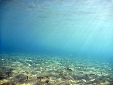 Underwater Stock Photo
