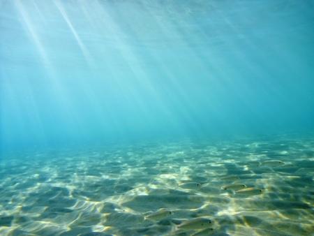 seabed: Underwater Stock Photo