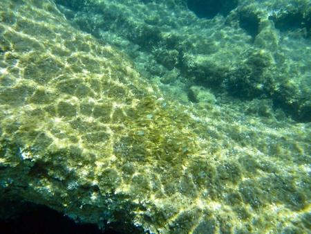 Underwater in the aegean Stock Photo - 11483950