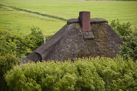 thatched roof: Thatched roof