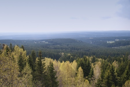 Harz Mountains, Germany photo