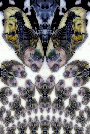 kaleidoscopic: Kaleidoscopic Pattern