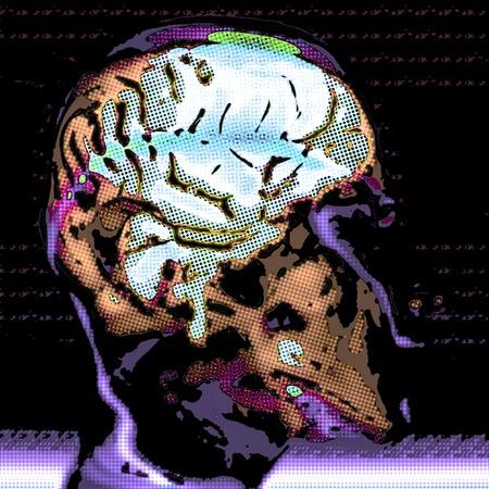 Human Brain Stock Photo - 15384132