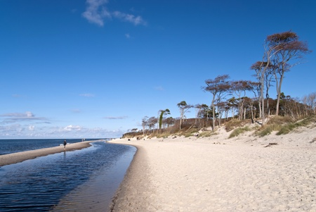 Beach Weststrand of darss, Germany photo