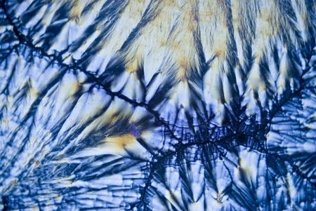 ascorbic acid: Microcrystals of Ascorbic Acid
