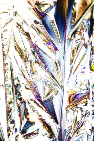polarization: Microcrystals of tartaric acid in polarized light