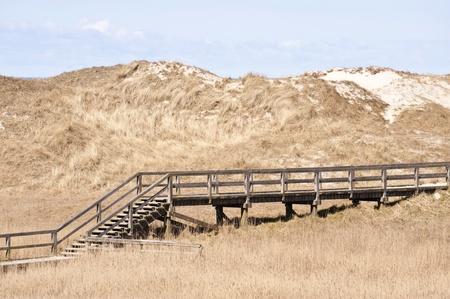 sandbank: Dune Landscape in St. Peter-Ording, Germany